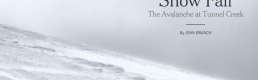 Snow Fall, the future of online journalism?