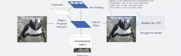 Facebook's Rosetta: How Are Algorithms Using Our Data?