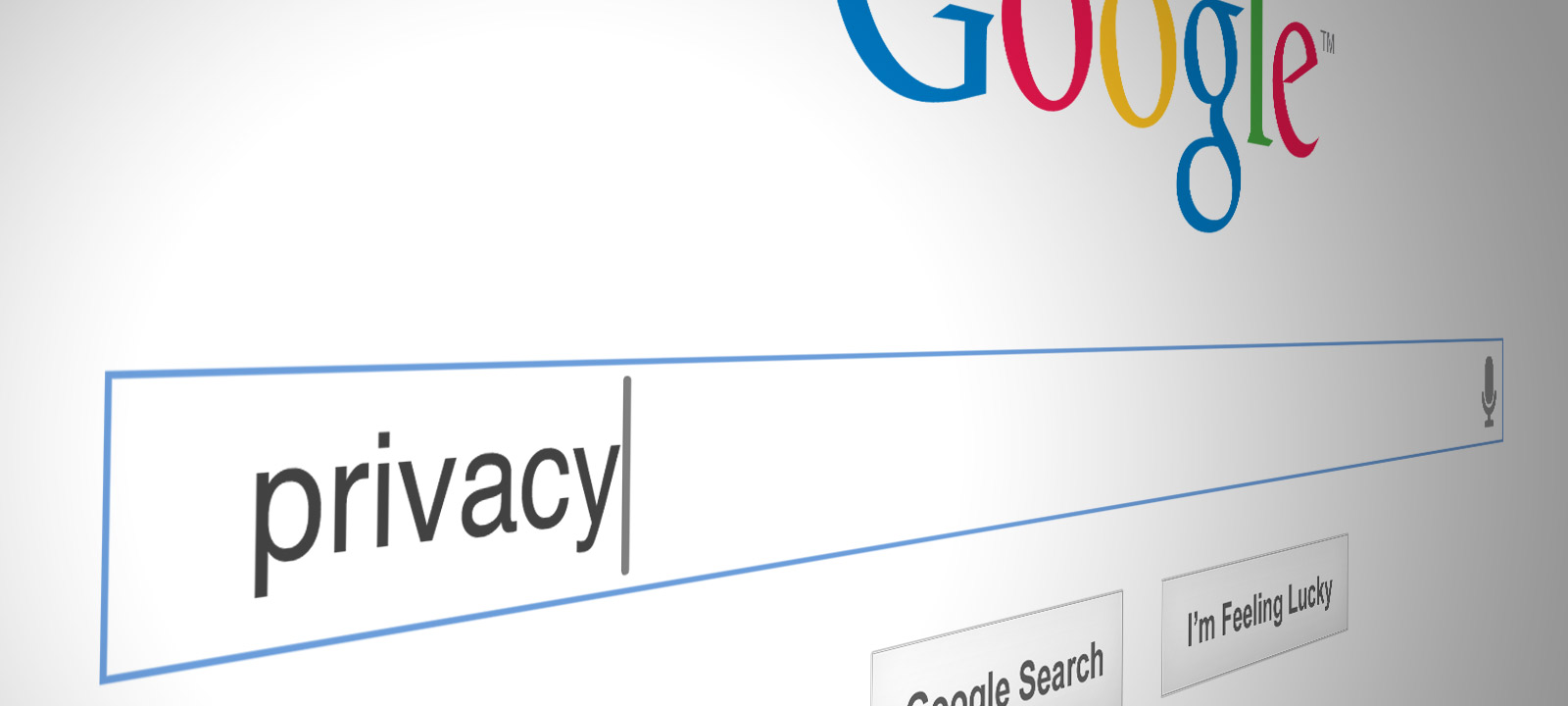 google privacy .