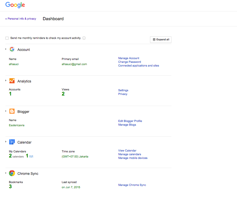 Google Dashboard Result