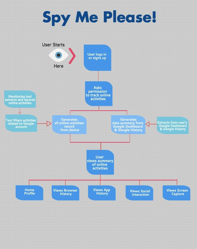 Flowchart of the working app