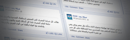 Citizen Journalism in Egypt: The Newsfeed of the Revolution