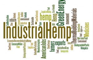 Industrial-Hemp-Cloud