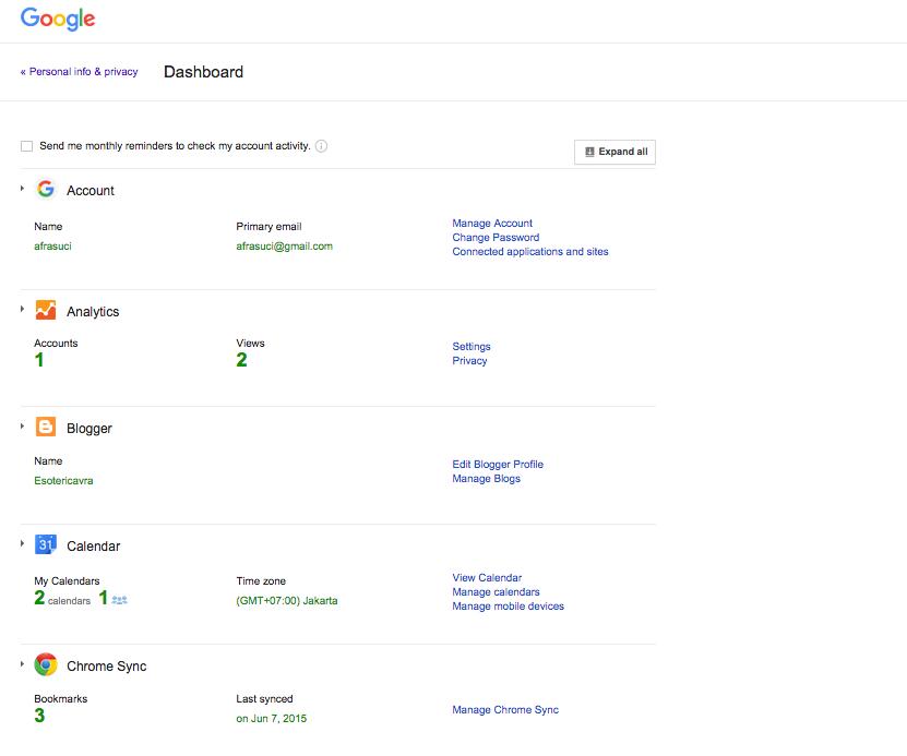 Google Dashboard Result