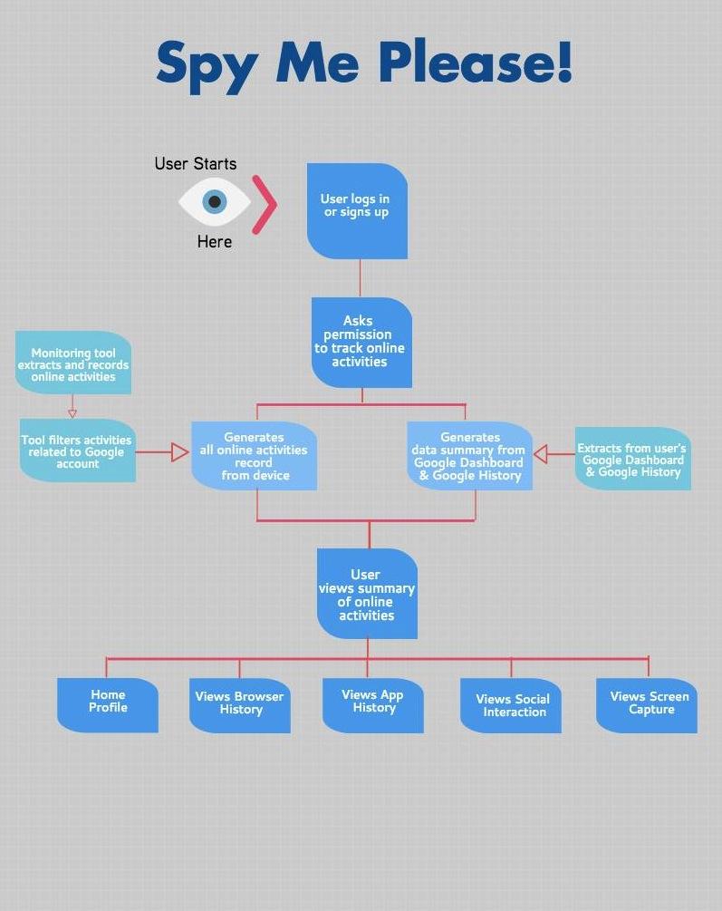 Flowchart of the working app
